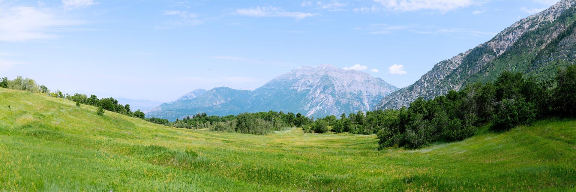 Mountain Meadows Deer Valley Utah